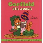 Garfield sta acasa