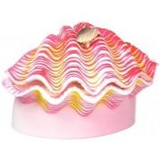 Penn Plax Figura Decorativa de Resina para acuarios, tamaño pequeño, diseño de almeja Tropical