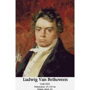 Kit goblen - Ludwig van Beethoven
