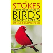 The Stokes Essential Pocket Guide to the Birds of North America, Paperback