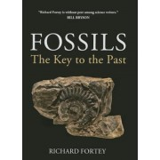 Fossils: The Key to the Past, Paperback