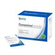 Guna Gunamino Formula 24 Bustine