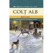Colt Alb (eBook)