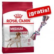 Royal Canin Size 15 kg + Cuerda Trixie multicolor ¡gratis! - Maxi Ageing 8+ (15 kg)