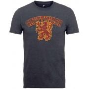 PhD Harry Potter - Gryffindor Sport T-Shirt