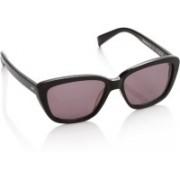 Superdry Wayfarer Sunglasses(Pink)