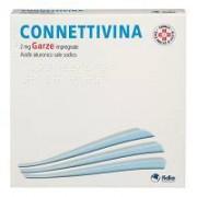 Fidia Farmaceutici Spa Connettivina Garze 10 Garze