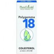 Polygemma 18 - colesterol 50ml PLANTEXTRAKT