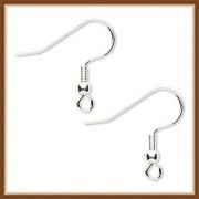 Sparkle Int Ear Hook bead and loop ear wires
