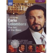 Video Delta Carlo Colombara - The art of the bass - DVD