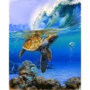 Gaira Malování podle čísel Mořská želva M991468