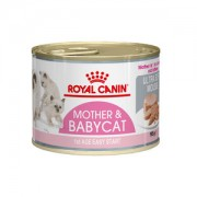 Royal Canin Mother & Babycat Mousse - 12 x 195 g