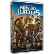 Teenage Mutant Ninja Turtles DVD 2014