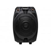 Denver TSP-302 Mobiele PA luidspreker 16.5 cm 6.5 inch werkt op een accu, werkt op het lichtnet 1 stuks
