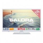 Salora LED TV 43FSW5012