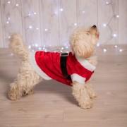 Merkloos Kerstkleding voor de hond