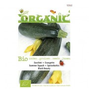 Bio zaden Organic Courgette Black Beauty