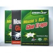 Capcană pentru șoareci cu adeziv 24/17 cm 3 buc.