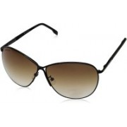 Fastrack Aviator Sunglasses(Brown)