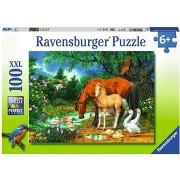 Ravensburger 108336 - Ló és csikó