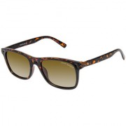 David Blake Brown Wayfarer Gradient Polarized UV Protected Sunglass