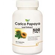 Biotrex Carica Papaya Leaf Extract - 500mg Powerful antioxidants (60 Capsules)