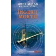 Ingerii mortii - Andy Mcnab Robert Rigby
