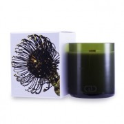 DayNa Decker Botanika Multisensory Candle with Ecowood Wick - Taiga 170g - Home Scent