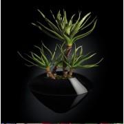Aranjament floral CAIRO IN SHINY VASE, negru 150cm