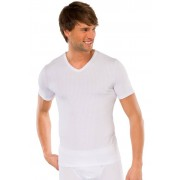 Schiesser Ondermode Authentic T-Shirt V-Neck 2Pack Wit / male