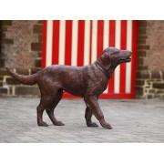 Statuie de bronz moderna Labrador