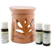 Candelă de aromaterapie și 3 sticluțe de ulei de parfum 10ml: Liliac, Hibiscus și Night Flower