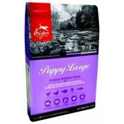 Orijen Dry Puppy Large
