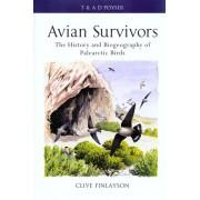 Avian Survivors - The Biogeography of Palearctic Birds