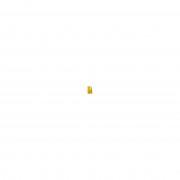 Decléor Decleor Aromessence Encens Nourishing Rich Body Oil 100ml