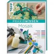 """Buch """"PraxisWissen Mosaik"""""""