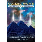 Cosmic Womb: The Seeding of Planet Earth, Paperback