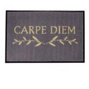 Gift Company Fussmatte waschbar Carpe Diem