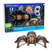 Tarantula Control Remoto Niño Juguetes Discovery Kids