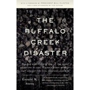 The Buffalo Creek Disaster: How the Survivors of One of the Worst Disasters in Coal-Mining History Brought Suit Against the Coal Company -- And Wo, Paperback/Gerald M. Stern