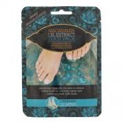 Xpel Macadamia Oil Extract Foot Pack Fusspflege für Frauen hydratisiert die Füße