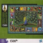 Big Ben Puzzle: Peacock and Birds