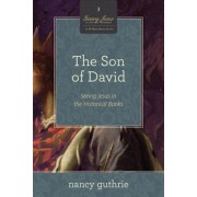 The Son of David: Seeing Jesus in the Historical Books (a 10-Week Study), Paperback