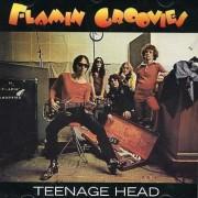 The Flamin Groovies - Teenage Head (0743217169022) (1 CD)