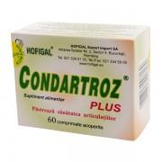 Condartroz Plus Hofigal 60cpr