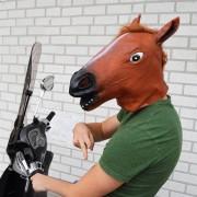 Masca Face Horse