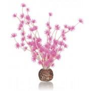 biOrb rostlina Bonsai růžová