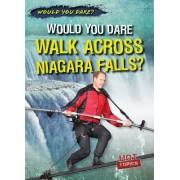 Would You Dare Walk Across Niagara Falls?