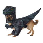 CALIFORNIA COSTUME COLLECTIONS California Costumes Collections PET20169 Pupasaurus Rex Dog Costume, X-Small