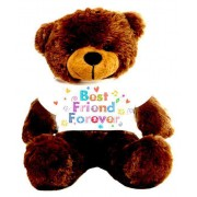Brown 2 feet Big Teddy Bear wearing a Best Friend Forever T-shirt